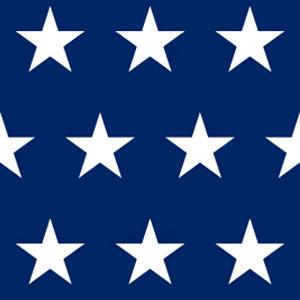 DAAD USA
